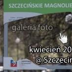 Szczecin, fotografie, galeria zdjęć, galeria fotografii, kwiecień 2015, w Szczecinie, kierunek Szczecin, Szczecin na zdjęciach, Szczecin na fotografiach