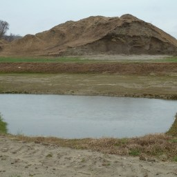 Dirt Pile saga, part two:  Blogger files complaint with DEP and the Conservation Commission