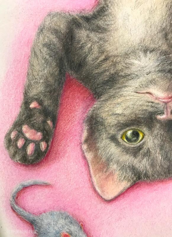 講師 色鉛筆画 猫