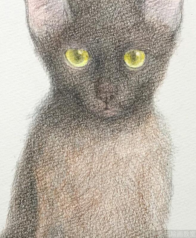 塗らずに描く色鉛筆画 講師 黒猫PRADA 6.5