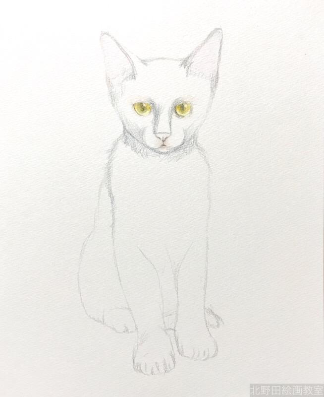塗らずに描く色鉛筆画 講師 黒猫PRADA 1