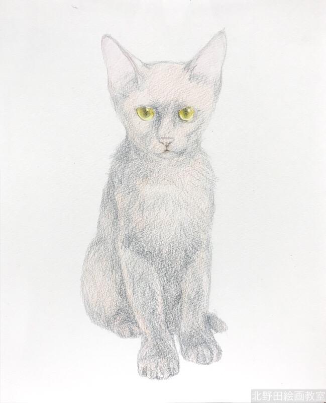 塗らずに描く色鉛筆画 講師 黒猫PRADA 3