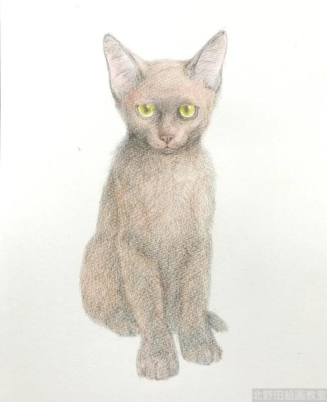塗らずに描く色鉛筆画 講師 黒猫PRADA 4