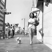Dames & Dogs #30