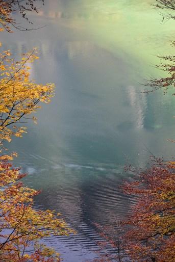 Herbstfarben am Königssee