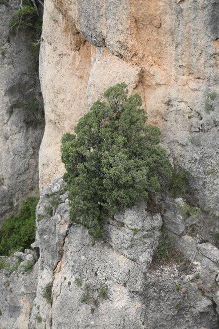 Blick auf eine Felswand