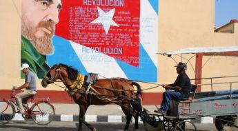 Lauko reklama Kuboje