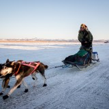 Sonny Lindner arrives into Unalakleet, Saturday evening