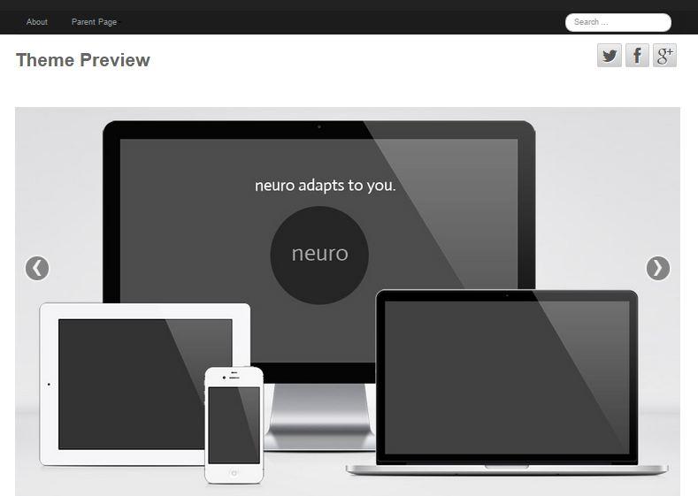 Neuro Free WordPress Theme