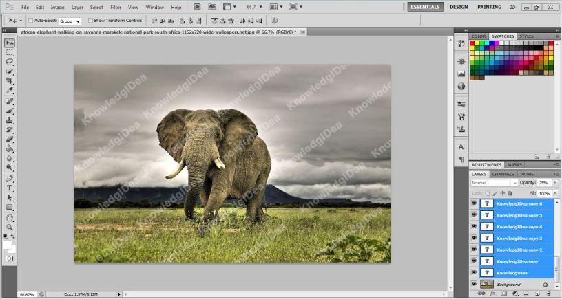 How To Make a Watermark in Photoshop step 4