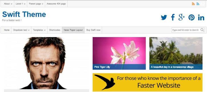 Swift Fastest WordPress Theme For Blogging
