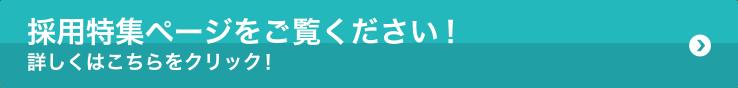 採用特集_リンクボタン