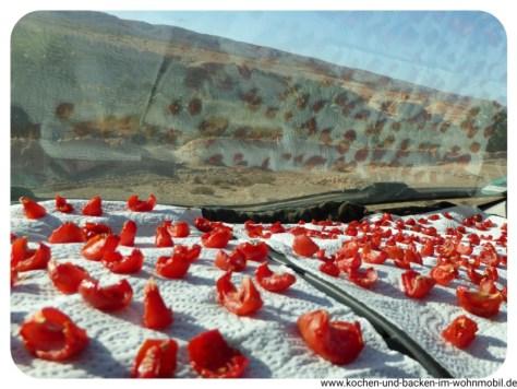 getrocknete Tomaten www.kochen-und-backen-im-wohnmobil.de