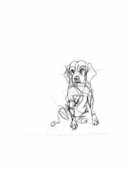 sitting dog digital drawing
