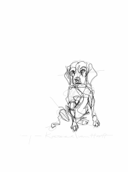 sitting dog digital drawing