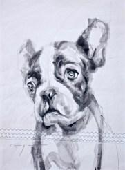 French bulldog puppy  Acrylic on sailcloth   50x70 cm   500€