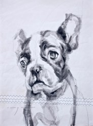 French bulldog puppy |Acrylic on sailcloth | 50x70 cm | 500€