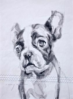 French bulldog puppy |Acrylic on sailcloth | 50x70 cm | 500€