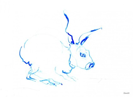 Bue Rabbit | Ink drawing on paper | A3 | 225€