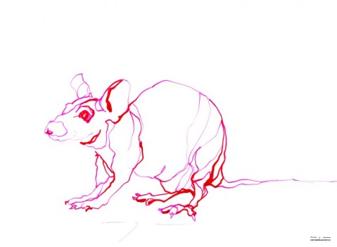 Red Mouse 2