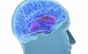 alzheimer-alcuni-segnali-possono-annunciare-larrivo-della-malattia