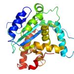 Sonificazione interpreta la struttura delle molecole traducendola in note