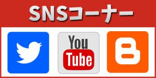 sns_banner_l