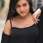 Actress Mishti Chakraborty Hot Stills