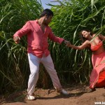 365 Days Telugu Movie Hot Stills