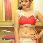 Actress Shriya Vyas Hot Navel Show Stills