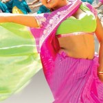 telugu-bgrade-movie-hot-stills (12)