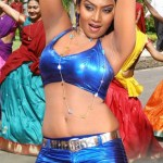 telugu-bgrade-movie-hot-stills (13)