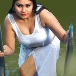 telugu-bgrade-movie-hot-stills (15)
