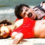 telugu-bgrade-movie-hot-stills (16)