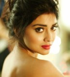 Actress-Shriya-Saran-Hot-Stills- (3)