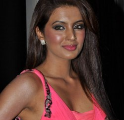 Actress Geeta Basra Hot Stills (1)