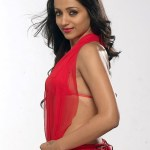 Actress Trisha Hot Stills (3)