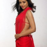 Actress Trisha Hot Stills (4)