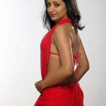 Actress Trisha Hot Stills (6)
