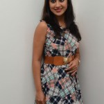 Yaman Movie Audio Launch (112)