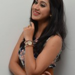 Yaman Movie Audio Launch (138)
