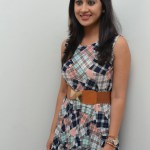 Yaman Movie Audio Launch (87)