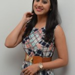 Yaman Movie Audio Launch (90)