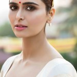 Actress Meenakshi Dixit (8)