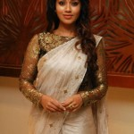 Actress Nivetha Pethuraj (1)