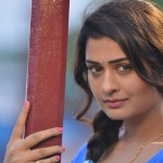 Actress PAYAL RAJPUT New Hot Stills (35)