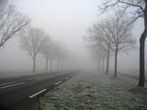 brouillard sur route