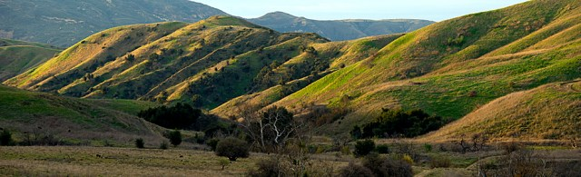 Chino Hills State Park © 2012, California State Parks. [Photo by Brian Baer]