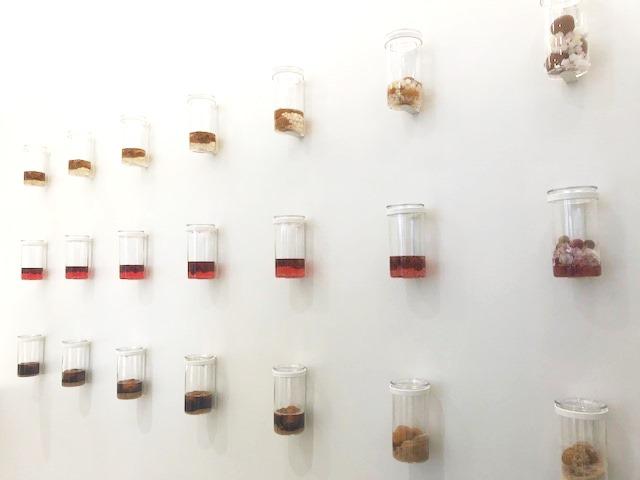 壁面のボトル