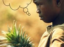 A boy carries a pineapple
